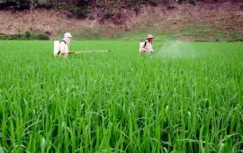 Tầm quan trọng của máy phun phân bón trong nông nghiệp