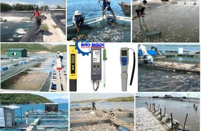 Máy đo ph nước với môi trường nuôi trồng thủy hải sản