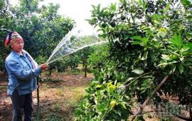 Các loại máy cần thiết để làm vườn