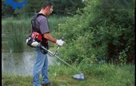 Máy cắt cỏ chuyên dụng để cắt cỏ voi