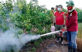 Giới thiệu những loại máy phun thuốc bằng khói hiệu quả nhất hiện nay
