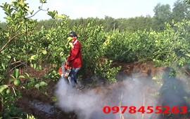 Cách sử dụng máy phun thuốc trừ sâu dạng khói