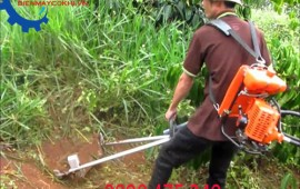 Siêu khuyến mãi cho tất cả các dòng máy xạc cỏ trong tháng 7