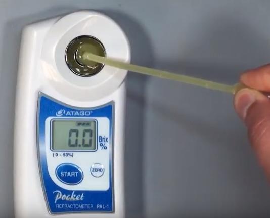 đo độ brix của dưa lưới bằng máy đo kỹ thuật số atago Pal-1